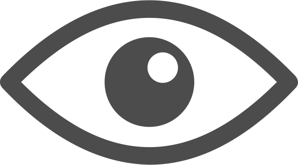 eye icon_smaller.png